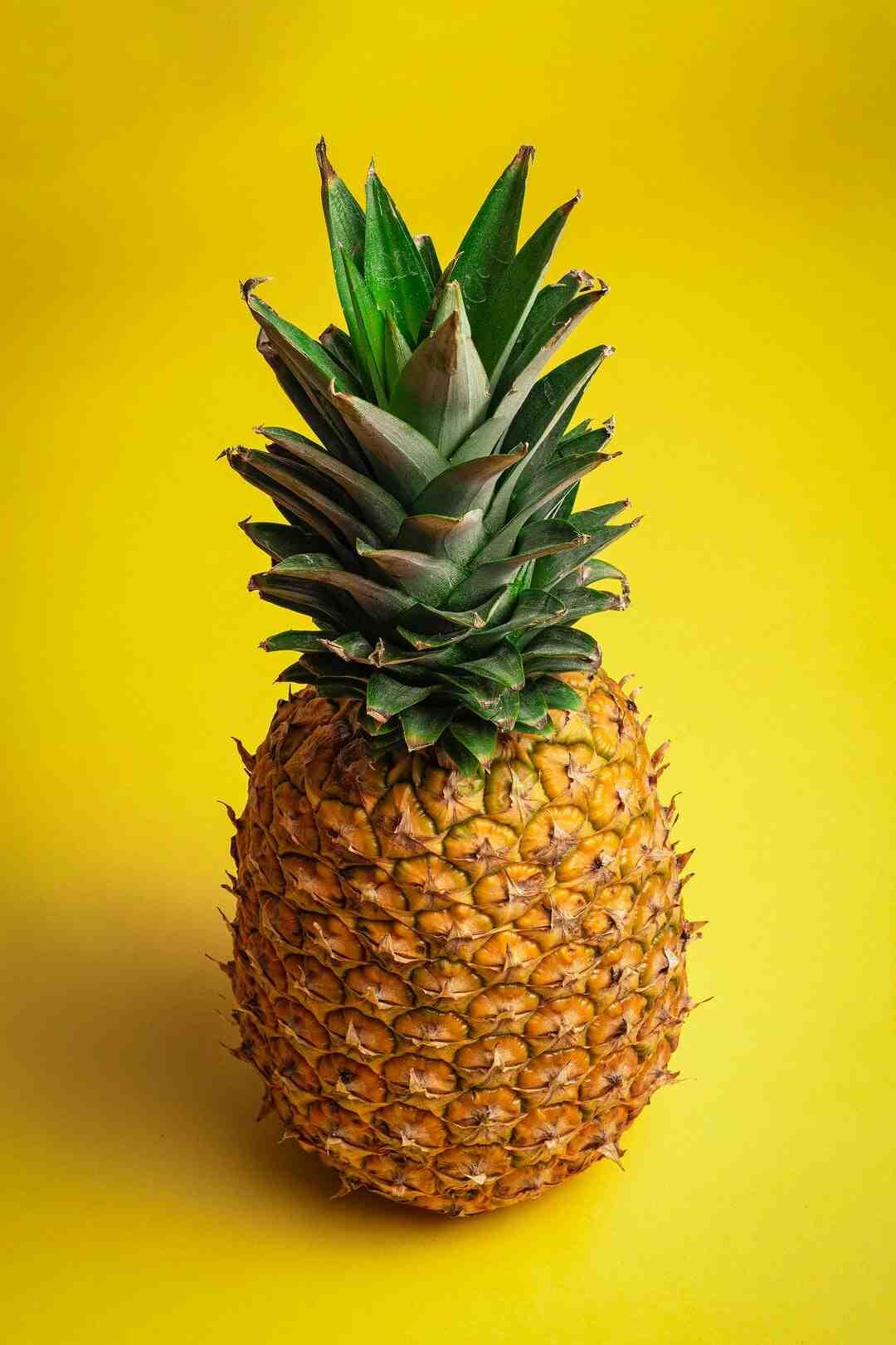 Comment planter un ananas