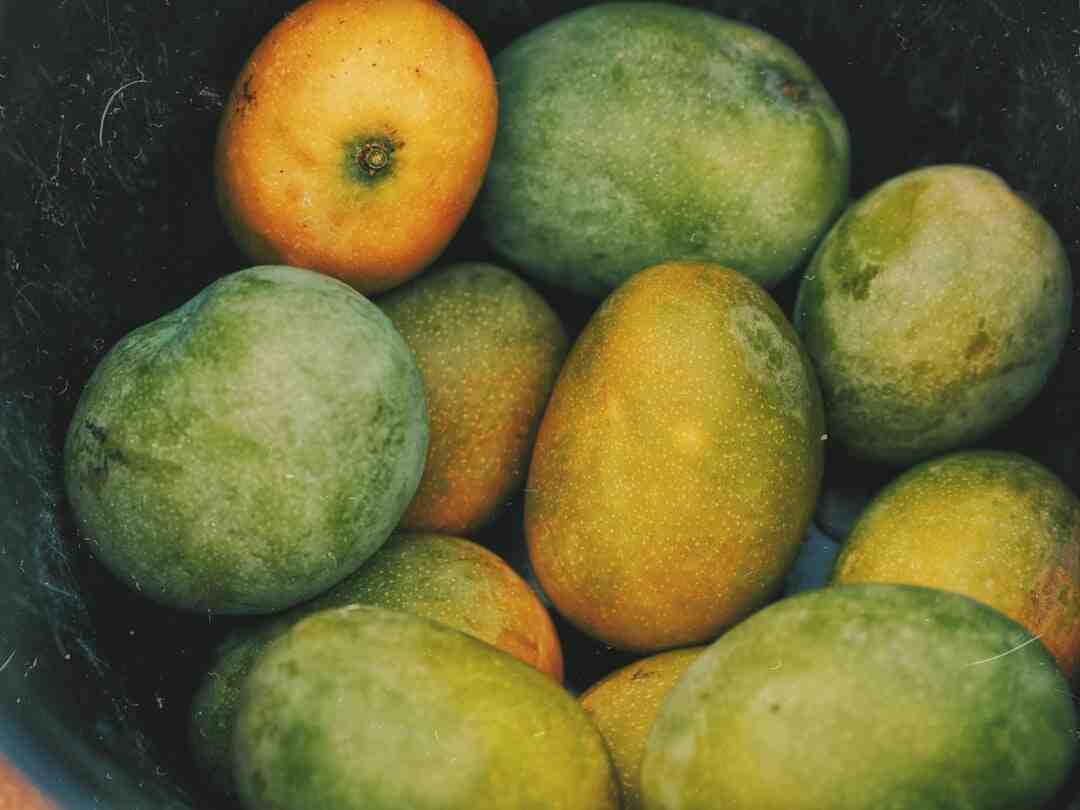 Comment planter un noyau de mangue
